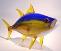 Yellow  Fin Tuna By Michael Hopko of Soul Glass