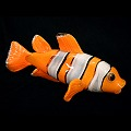 Clown Tropical Reef  Glass Fish Sculpture Wall Sculpture - NEMO
