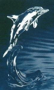 No complicado Tortuga Al borde  Swarovski Crystal Dolphin Maxi - Archived Data (Swarovski) - Crystal-Fox  Gallery