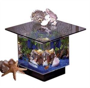 Superbe End Table Aquarium MWT 670